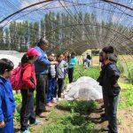 Exitoso encuentro de Forjadores Ambientales de la Región del Maule