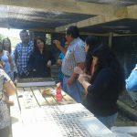 Comunidad escolar de Lihueno aprenden la importancia de reforestar la localidad con bosque nativo