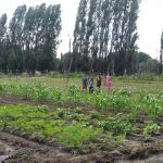 PRM Kümelkan llevó a cabo taller de ecología